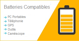 Batteries compatibles pour pc portables, gps, camescope.